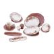 سرویس لاویوا مدل ورا نیو 46 پارچه رنگ شکلاتی